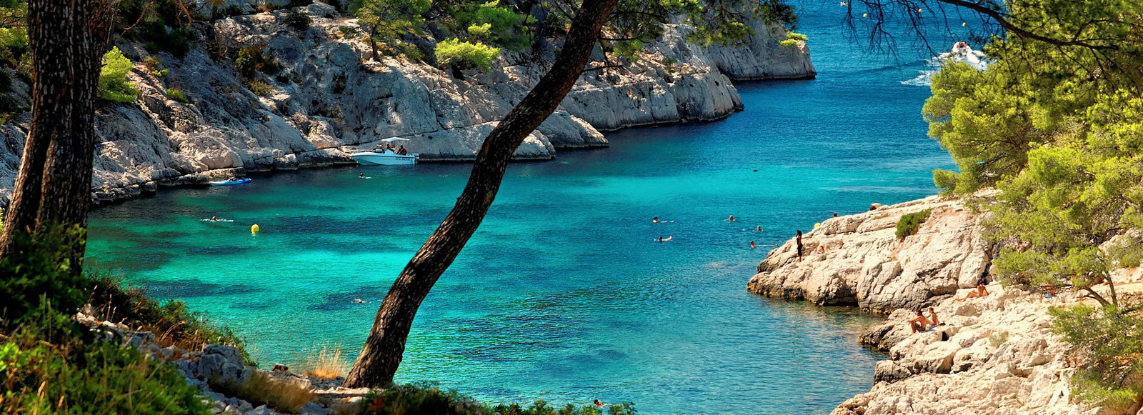Provence Shore Excursions Cassis Marseille